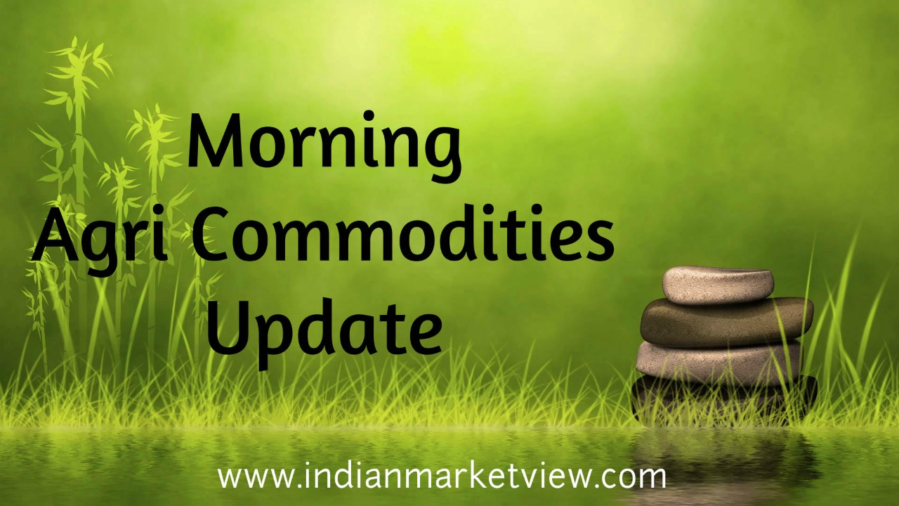 Agri Commodity Update  (4th February 2020)